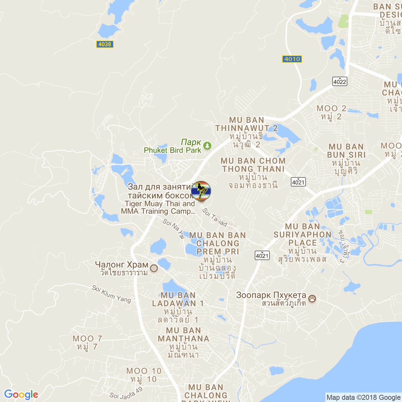 Тренировочный лагерь Tiger Muay Thai на карте Пхукета